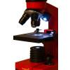 Световые микроскопы (оптические)